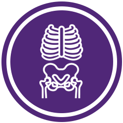 Icon Set X-Ray Purple